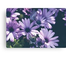 Purple Droplets Canvas Print