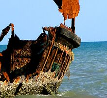Wreck of the Carpentaria Light Ship by Marilyn Harris