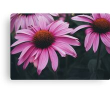 Untamed Love Canvas Print