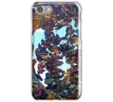 The Shoe Tree iPhone Case/Skin