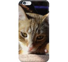 Dappled in Light iPhone Case/Skin
