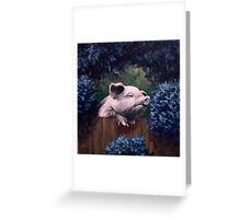 Pig of wild abandon. Original painting, 4x 4 in., 10x10 cm Greeting Card