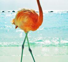 Flamingo on the Beach Sticker