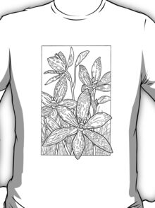 Australian Flower Series - Queen of Sheba Orchid B&W T-Shirt