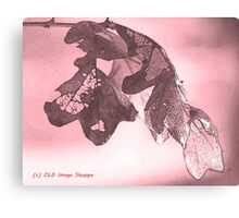 Oak Sumi-e Canvas Print