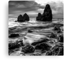 Rodeo Beach Canvas Print