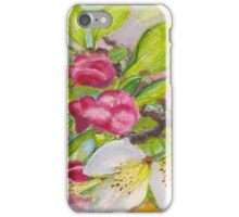 Apple blossom buds on a greeting card iPhone Case/Skin