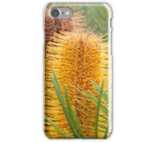 Gold Bottle Brush iPhone Case/Skin