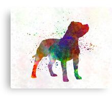 Staffordshire Bull Terrier in watercolor Canvas Print