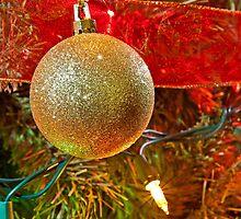 Christmas Ornaments by Dan Dexter