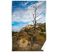 Barren tree and mountain Poster
