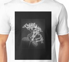 Fine art framed study of Estephanotis- Unisex T-Shirt
