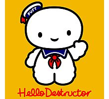 Hello Destructor Photographic Print
