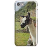 The Llama of Machu Picchu iPhone Case/Skin