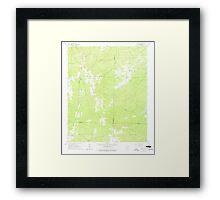 USGS TOPO Map Arkansas AR Willow 259879 1965 24000 Framed Print