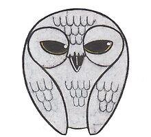Snow Owl by Ira Fail