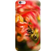 Bee on Grevillea flower iPhone Case/Skin