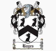 Hayes Coat of Arms (Donegal, Ireland) by coatsofarms