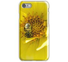 Bumble bee on large yellow flower iPhone Case/Skin