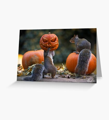 Squirrel with a pumpkin on his head Greeting Card