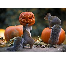 Squirrel with a pumpkin on his head Photographic Print