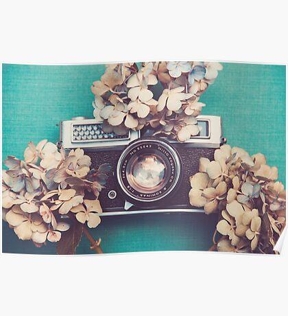 Camera & Hydrangea Poster
