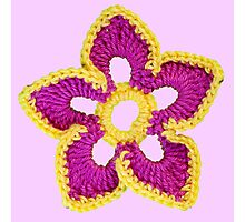 Pink, yellow croche flowers Photographic Print