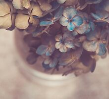Hydrangea Bouquet no. 2 by Bethany Helzer