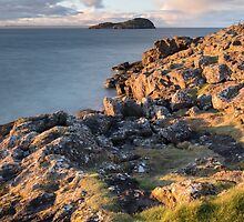 Craigleith Island by Christopher Cullen
