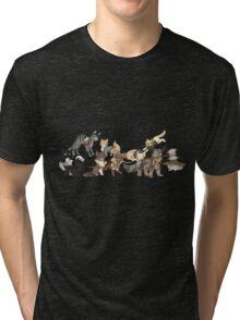 Catquisition Dragon Age: Inquisition Companions as Cats Tri-blend T-Shirt