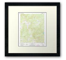 USGS TOPO Map Arkansas AR Willow 259881 1965 24000 Framed Print
