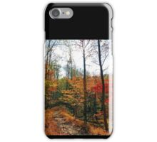 Fall Impression of the Swamp Path, Great Falls Park VA iPhone Case/Skin