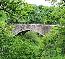 Oldest Railway Bridge In The World by Francis Drake