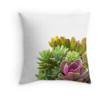 Pink Succulent and Metal Table Throw Pillow