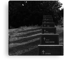 Grave of heroes Canvas Print