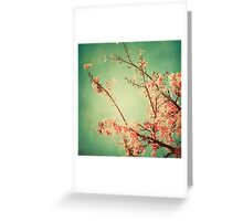 Rustic,tree,spring blossom,green,pink,grunge,vintage,elegant,chic, Greeting Card