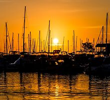 Sunset at Hillaries boat harbour by Tammee Berry