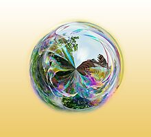 Bubble Globe by Robert Gipson