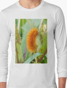 Oh To Be Petted Long Sleeve T-Shirt