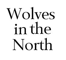 Wolves in the North Photographic Print
