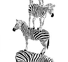 Zebras - A Tumbling Stack Of Stripes by PaperLighthouse