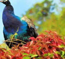 Peacock Amidst Autumn Colours - Impressions Sticker