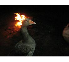 Fire Duck (goose on fire) Photographic Print