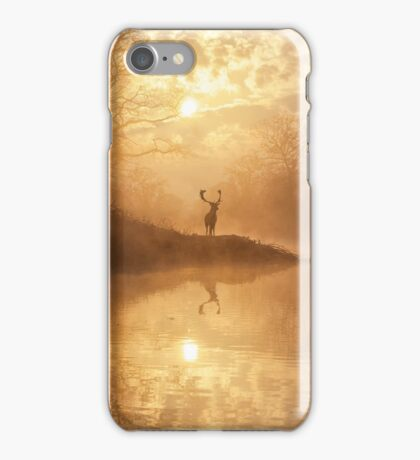 The hidden realm iPhone Case/Skin