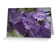 Beautiful Purple Bells Greeting Card