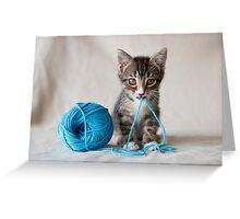 Rocket and the yarn Greeting Card