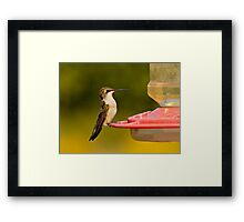 Join Me for a Snack? Framed Print