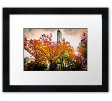 New York In The Fall Framed Print