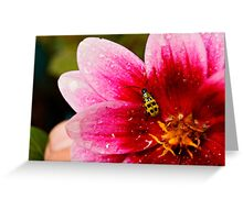 Can You See Me Now? Greeting Card