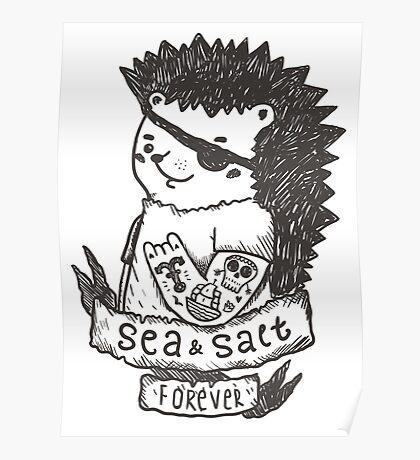 Hedgehog sailor Poster
